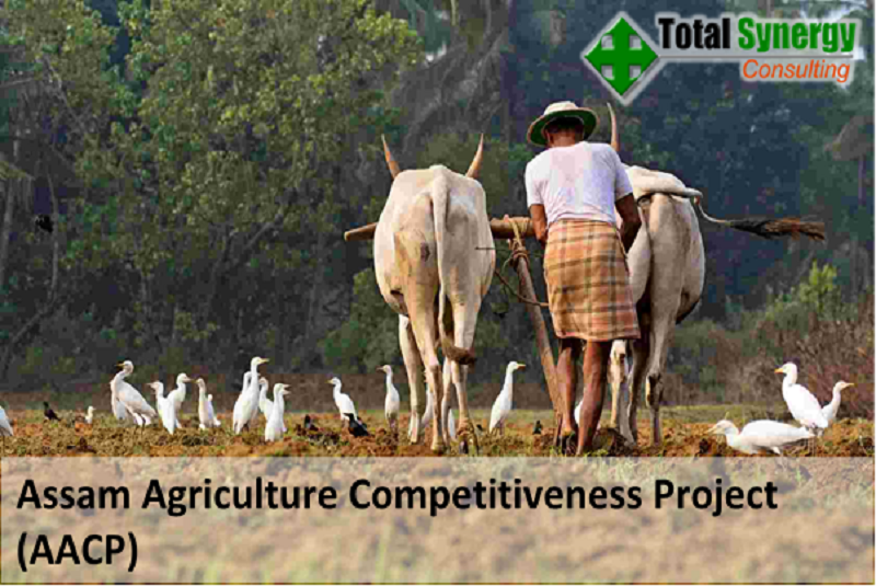 Assam Agriculture Competitiveness Project (AACP)