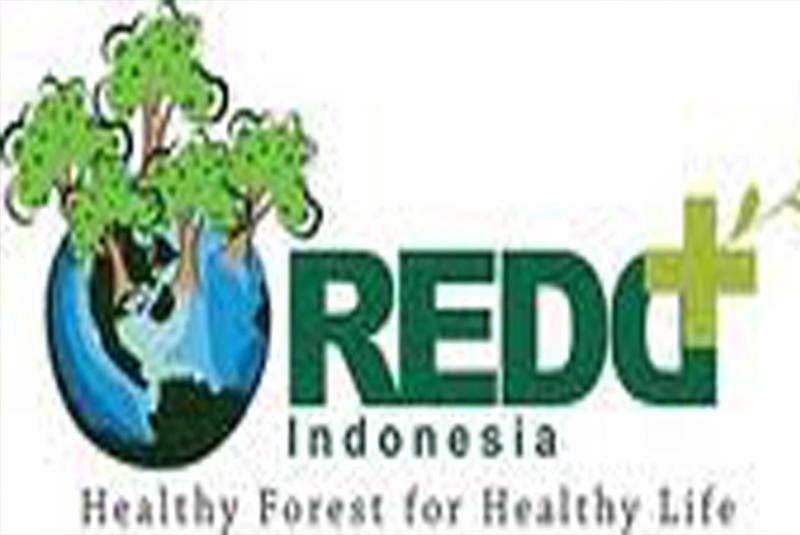 Support to the Establishment of Indonesia REDD+